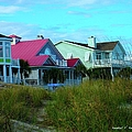 Looking Through The Grass At Isle Of Palms by Kendall Kessler