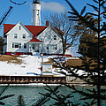 Looking Through The Pines - Sturgeon Bay Coast Guard Station by Janice Adomeit