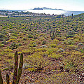 Looking Toward Bahia Kino Over Sonoran Desert-sonora-mexico by Ruth Hager