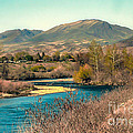 Looking Up The Payette River by Robert Bales