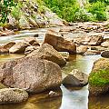 Looking Upstream The Colorado St Vrain River by James BO Insogna