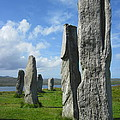 Looking West At Callanish by Denise Mazzocco