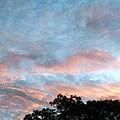 Looks Like And Oil Painted Sky by Belinda Lee