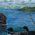 Loon Family And Morning Mist by Sandra Maddox