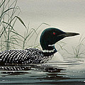 Loon Near The Shore by James Williamson