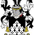 Looney Coat Of Arms Irish by Heraldry
