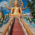Lord Buddha by Adrian Evans