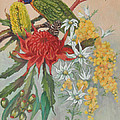 Lorikeet And Wildflowers by Aileen McLeod
