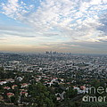 Los Angeles Skyline by Eclectic Captures