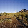 Lost Dutchman Park Supestition Mountains by Brian Lockett