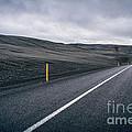 Lost Highway by Evelina Kremsdorf