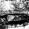 Lost Lagoon Bridge  by Will Borden