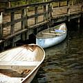 Lost Lake Boardwalk by Michelle Calkins
