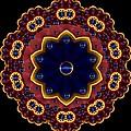 Lotus Bloom by Pepita Selles