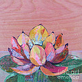 Lotus I by Shadia Derbyshire