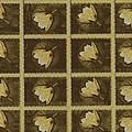 Lotus In 16 Bits by Pepita Selles