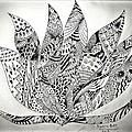 Lotus by Taskin B