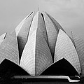 Lotus Temple - New Delhi - India by Aidan Moran