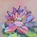 Lotus V by Shadia Derbyshire