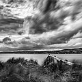 Lough Foyle View by Nigel R Bell