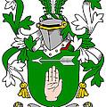 Loughnan Coat Of Arms Irish by Heraldry