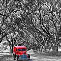 Louisiana Dream Drive Bw by Steve Harrington