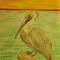 Louisiana State Bird by Patricia Morales