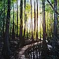 Louisiana Wildlife Throughway by Lizi Beard-Ward