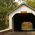 Loux Bridge And Sharp Left - Bucks County  by Anna Lisa Yoder