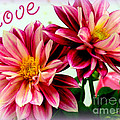 Love And Flowers by Kathy  White