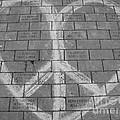 Love And Peace by Michael Krek