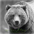 Love Bears All Things ... by Stephen Stookey