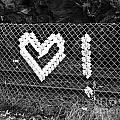 Love by Brandi Moore