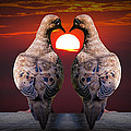 Love Dove Birds At Sunset by Randall Nyhof