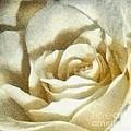Love Everlasting by Janine Riley