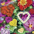 Love Flowers Garden by Alixandra Mullins