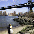 Love In The Afternoon - Dumbo by Madeline Ellis