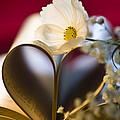 Love Is All Around by Jan Bickerton