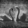 Love Is.. by Nina Stavlund
