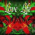 Love Life Mirrored Lilies by Barbara Griffin