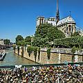 Love Locks On Bridge By Notre Dame In Paris France by Pam  Elliott