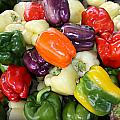Love My Peppers by Tina Meador