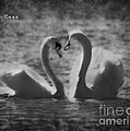 Love... by Nina Stavlund