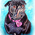 Love Pug by Donna Proctor