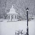 Love Through The Winter by Evelina Kremsdorf