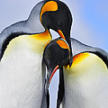 Love by Tony Beck