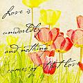 Love Words by Kae Cheatham
