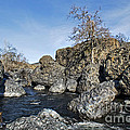 Lovejoy Basalt Formations  by Abram House