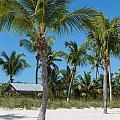 Lovely Beach On Key West East Side by John M Bailey