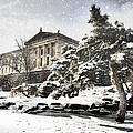 Lovely Snow On The Museum by Alice Gipson